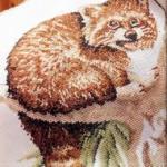 вышивка красивый енотик