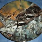 сувенирная тарелка смотрящие еноты на дереве