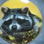 сувенирная тарелка с енотом