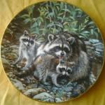сувенир тарелка еноты