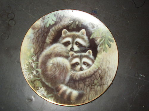 тарелка сувенирная енот испугался