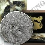 монета енот