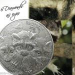 монетки енот
