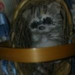 фарфоровая кукла 3