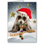 raccoon_baby_xmas_season_greetings_2_cards-rbd40e4bbd5224e948c7bd107413bdb42_xvuat_8byvr_324