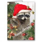 raccoon_christma_a_time_for_fun_cards-r8975d416a4da4f55b871dd55b304a563_xvuat_8byvr_512