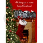 raccoon_christmas_cards_pk_of_10
