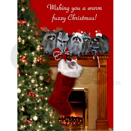 raccoon_christmas_cards_pk_of_10