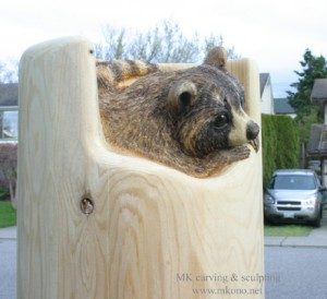 raccoon2013_carving_angle