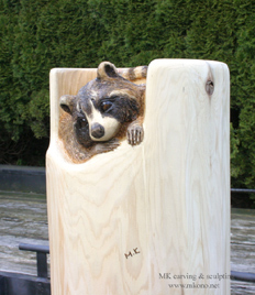 raccoon2013_carving_front