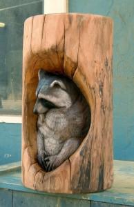 raccoonowl016