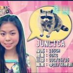 еноты в Китае