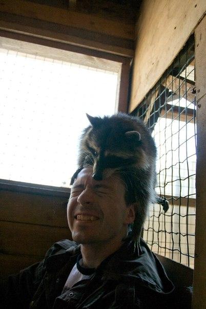 Если совсем повезет - узнаете, что такое шапка из енота :))