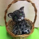 кот, игрушка, подарок, ручная работа