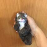 кот, кошка, подарок, игрушка, сувенир, ручная работа